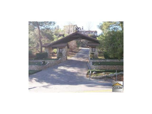 1111 Vac/Avenida Donari/Vic Camino, Agua Dulce, CA 91350 (#SR18217180) :: The Pratt Group
