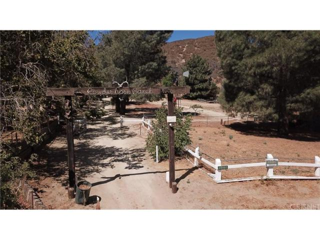 40003 107TH Street W, Leona Valley, CA 93551 (#SR18222219) :: The Real Estate Offices of Talbot and Watson
