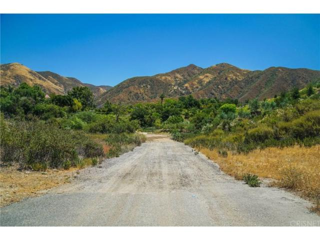 1 Warm Springs Drive, Canyon Country, CA  (#SR18220106) :: Carie Heber Realty Group
