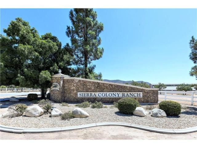 9805 Sweetwater Drive, Agua Dulce, CA 91390 (#SR18223452) :: The Real Estate Offices of Talbot and Watson