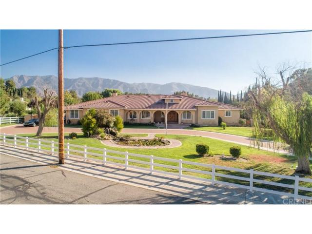 15770 Iron Canyon Road, Canyon Country, CA 91387 (#SR18226233) :: The Real Estate Offices of Talbot and Watson
