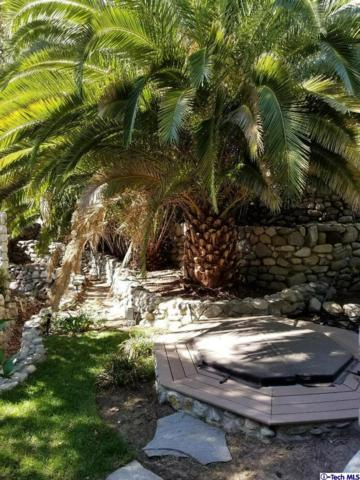 10225 Sunland Boulevard, Shadow Hills, CA 91040 (#318003776) :: Lydia Gable Realty Group
