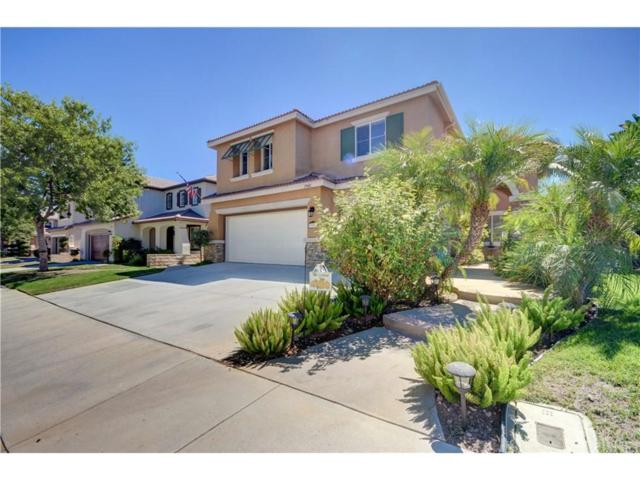 29082 Madrid Place, Castaic, CA 91384 (#SR18227404) :: Carie Heber Realty Group