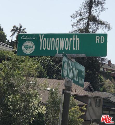 0 Youngworth, Culver City, CA 90230 (#18387102) :: The Fineman Suarez Team