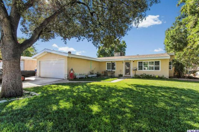 19328 Newhouse Street, Canyon Country, CA 91351 (#318003865) :: TruLine Realty