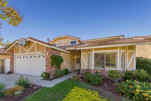 5543 Micaela Drive, Agoura Hills, CA 91301 (#218012410) :: Lydia Gable Realty Group