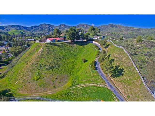 30403 Byfield Road, Castaic, CA 91384 (#SR18246254) :: Carie Heber Realty Group