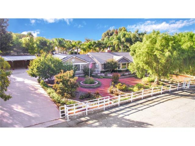 29320 Hasley Canyon Road, Castaic, CA 91384 (#SR18247624) :: Carie Heber Realty Group