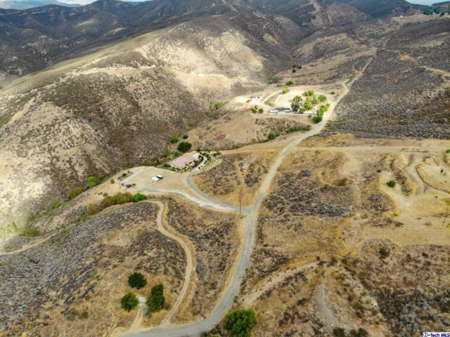 35371 Ridge Route Road, Castaic, CA 91384 (#318004147) :: Carie Heber Realty Group