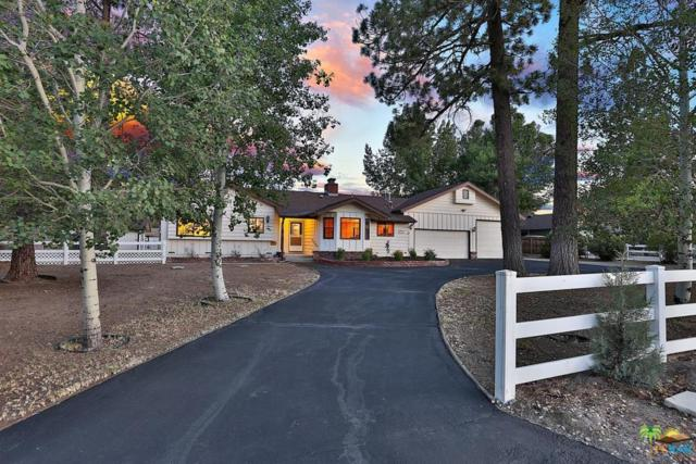 1540 Shay Road, Big Bear, CA 92314 (#18396514PS) :: The Fineman Suarez Team