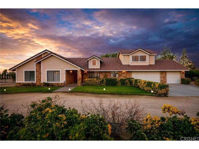 9141 E Avenue S4, Littlerock, CA 93543 (#SR18251351) :: TruLine Realty
