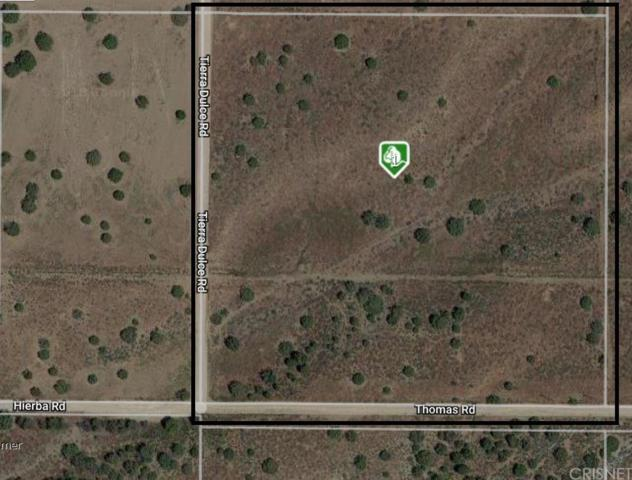 0 Thomas Rd/Terra Dulce Road, Acton, CA 93510 (#SR18255292) :: Paris and Connor MacIvor