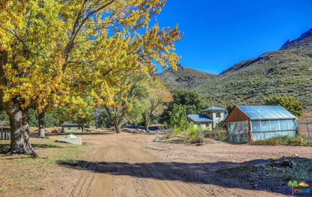 55101 State Highway 74, Mountain Center, CA 92561 (#18400256PS) :: TruLine Realty