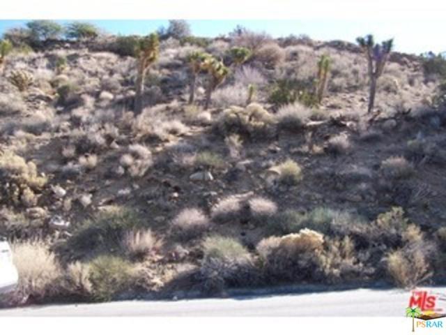 54785 Onaga Trails, Yucca Valley, CA 92284 (#18403090PS) :: Paris and Connor MacIvor