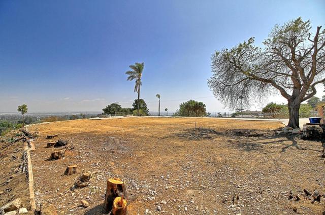 660 Skyview Terrace, Ventura, CA 93003 (#218014106) :: Paris and Connor MacIvor
