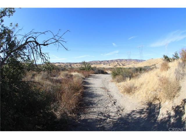 0 Esguerra Road, Saugus, CA 91390 (#SR18281082) :: Lydia Gable Realty Group