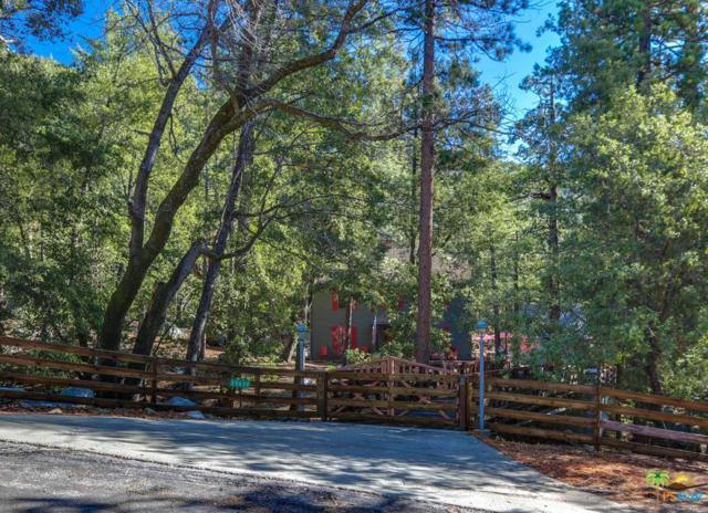 25630 Glen Road, Idyllwild, CA 92549 (#18414476PS) :: The Real Estate Offices of Talbot and Watson