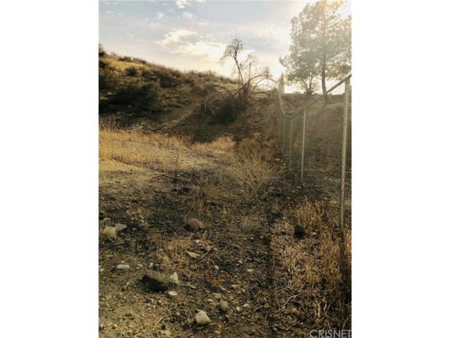 0 Sierra Cross, Canyon Country, CA 91387 (#SR18288515) :: Paris and Connor MacIvor