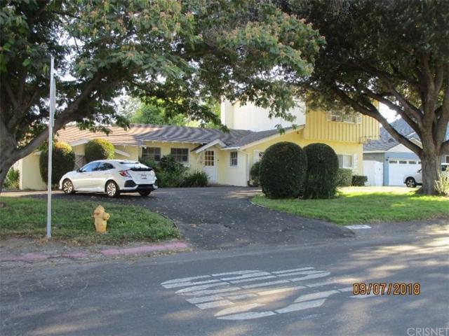 23006 Mariano Street, Woodland Hills, CA 91367 (#SR18290457) :: Golden Palm Properties