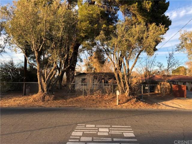 8137 E Avenue U, Littlerock, CA 93543 (#SR18292396) :: Golden Palm Properties