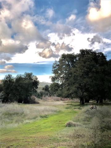 36200 Paradise Ranch Road #11, Castaic, CA 91384 (#219009611) :: Paris and Connor MacIvor