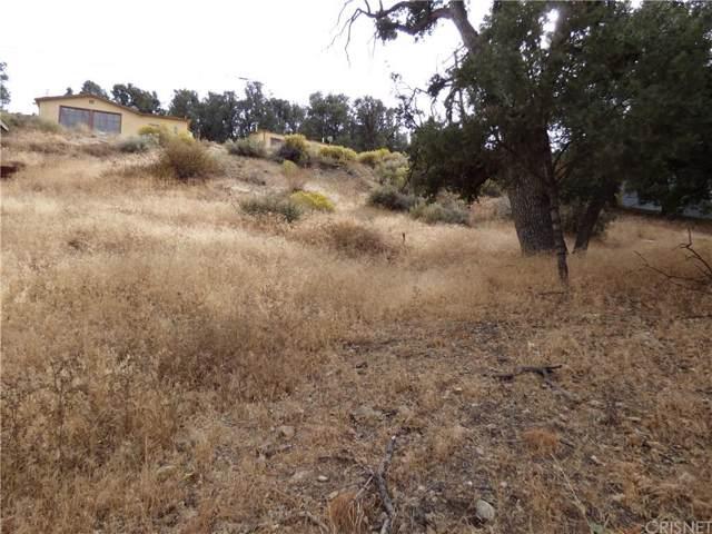 0 Park Drive, Frazier Park, CA 93225 (#SR19244774) :: Lydia Gable Realty Group