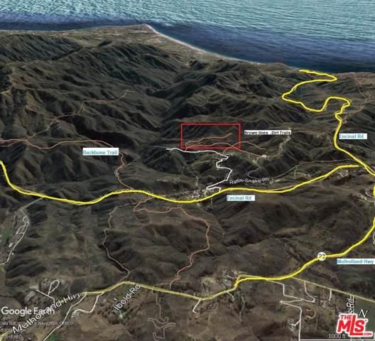 0 Rattlesnake /Encinal Road, Malibu, CA 90265 (#19521572) :: Golden Palm Properties