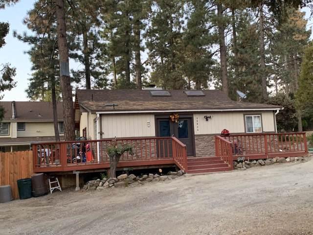 53420 Double View Drive, Idyllwild, CA 92549 (#219012790) :: DSCVR Properties - Keller Williams