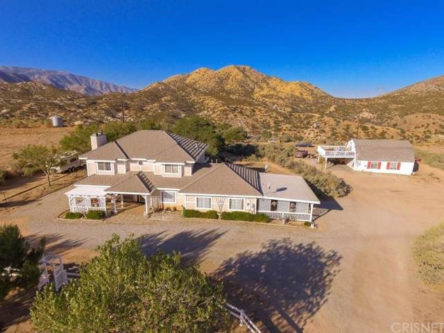 31373 Angeles Forest Highway, Palmdale, CA 93550 (#SR19246196) :: Lydia Gable Realty Group