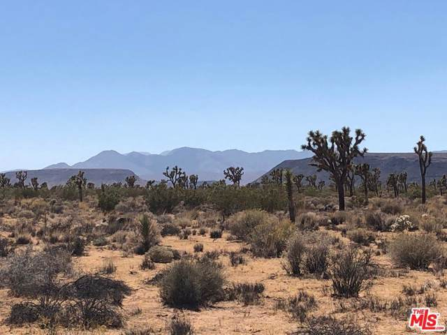 0 Warren Vista Avenue, Yucca Valley, CA 92285 (MLS #19522098) :: The John Jay Group - Bennion Deville Homes