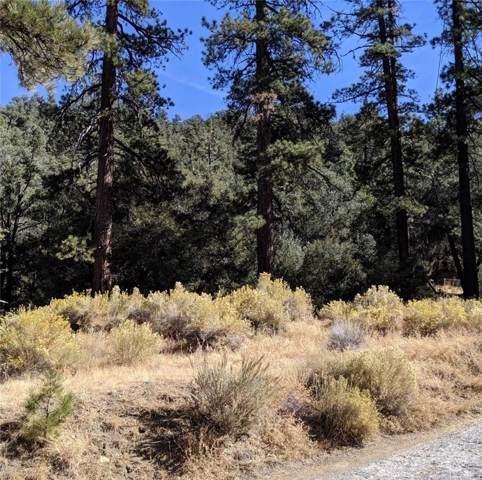 1428 Bernina Drive, Pine Mountain Club, CA 93222 (#SR19250475) :: TruLine Realty