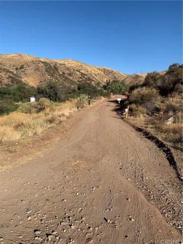 0 Vac/Vic Soledad Canyon Rd/4Mi Circle, Acton, CA 93510 (#SR19249225) :: The Fineman Suarez Team