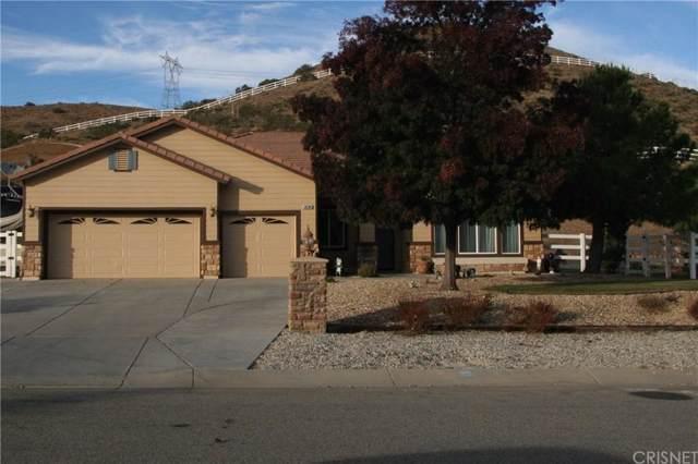 34384 Katrina Street, Acton, CA 93510 (#SR19255573) :: Golden Palm Properties