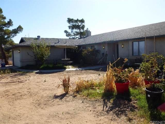 20847 Candelaria Road, Apple Valley, CA 92308 (#SR19256047) :: The Pratt Group