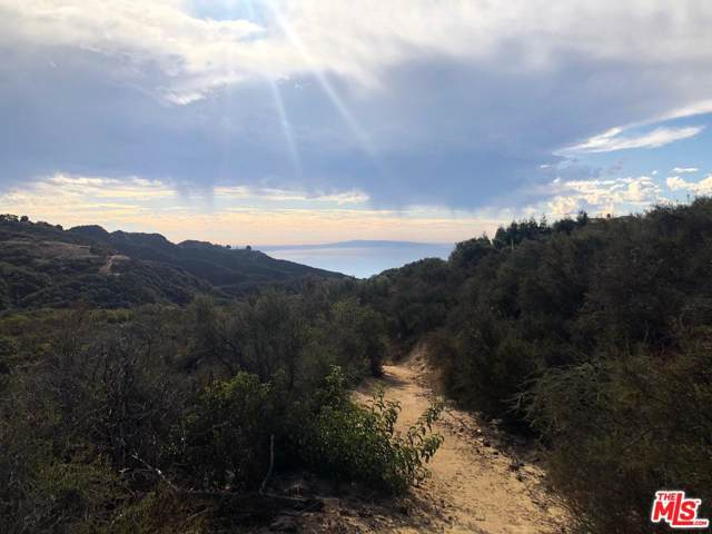 0 Vista Del Mar Rd, Topanga, CA 90290 (#19-526488) :: Randy Plaice and Associates
