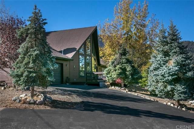 2037 Woodland Drive, Pine Mountain Club, CA 93222 (#SR19254541) :: TruLine Realty