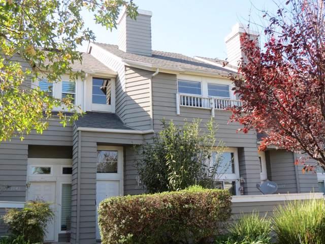 1033 Portola Road, Ventura, CA 93003 (#219013380) :: Lydia Gable Realty Group