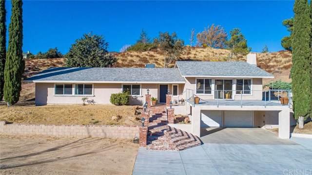8269 Elizabeth Lake Road, Leona Valley, CA 93551 (#SR19263042) :: Golden Palm Properties