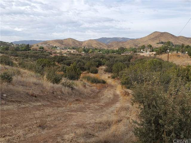 0 Vac/Bedworth Rd/Vic Green Doer, Agua Dulce, CA 91350 (#SR19266136) :: Lydia Gable Realty Group