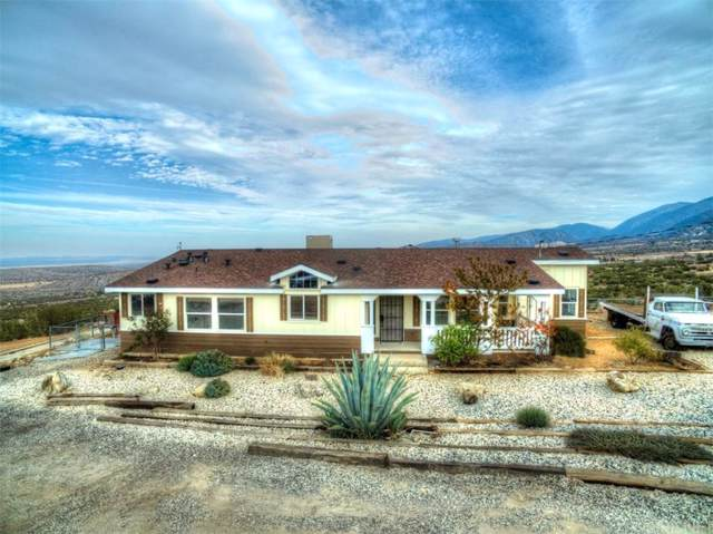 11803 Beaucourt Avenue, Juniper Hills, CA 93543 (#SR19266259) :: Golden Palm Properties