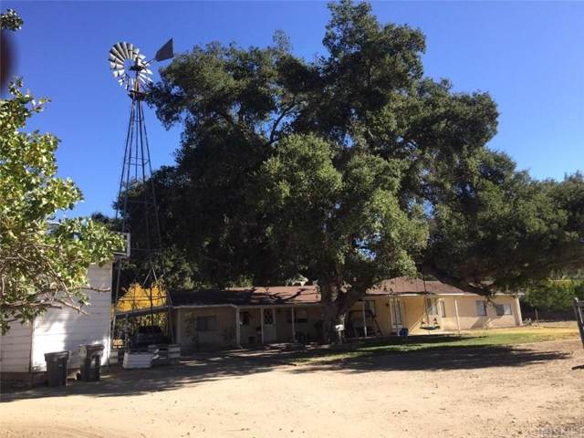 16031 Live Oak Springs Canyon Road, Canyon Country, CA 91387 (#SR19267283) :: Randy Plaice and Associates