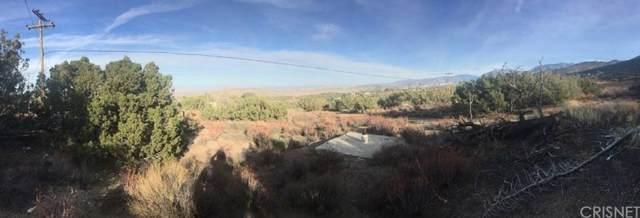 0 Vac/Juniper Hills/Vic Pinecres, Juniper Hills, CA 93543 (#SR19267175) :: Golden Palm Properties