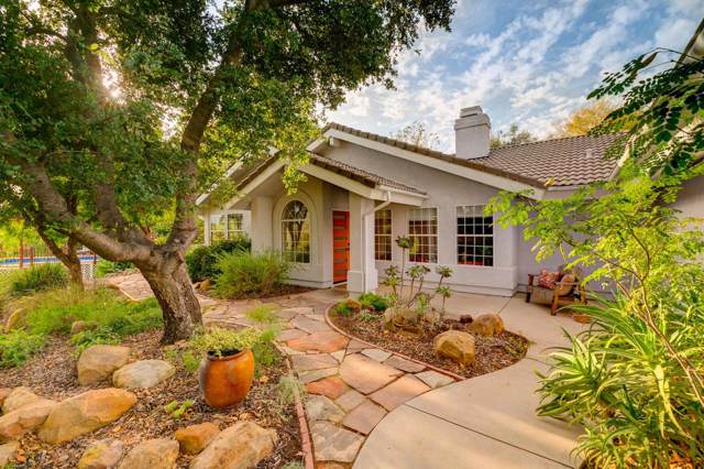 12841 Treeranch Road, Ojai, CA 93023 (#219013901) :: The Pratt Group