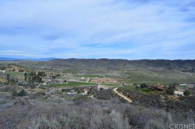 0 Vac/Vic Leona Ave/107Th Stw, Leona Valley, CA 93551 (#SR19268916) :: Lydia Gable Realty Group
