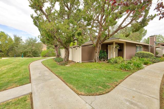 28551 Conejo View Drive, Agoura Hills, CA 91301 (#219013991) :: Lydia Gable Realty Group