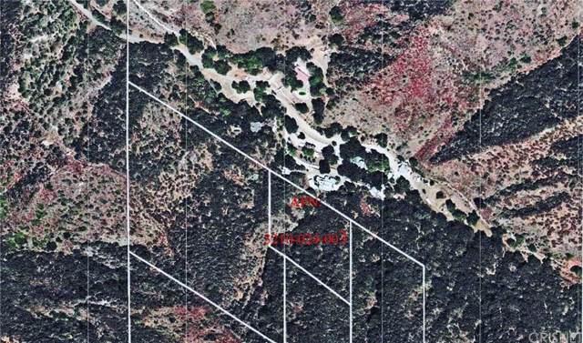 25554 Sand Canyon Road, Canyon Country, CA 91387 (#SR19269368) :: Randy Plaice and Associates