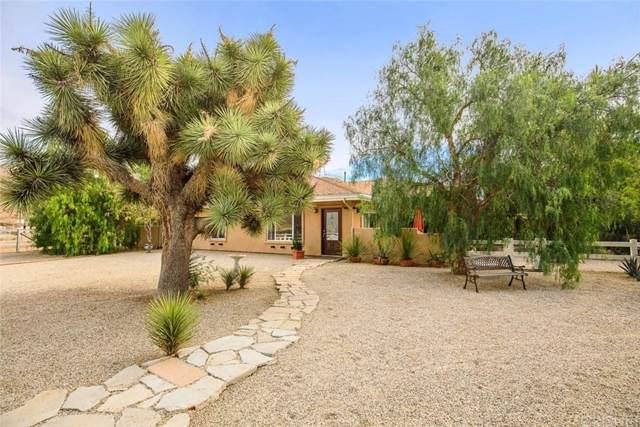 790 W Carson Mesa Road, Acton, CA 93550 (#SR19265014) :: TruLine Realty