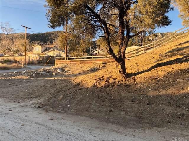 916 Elm, Frazier Park, CA 93225 (#SR19272406) :: Randy Plaice and Associates