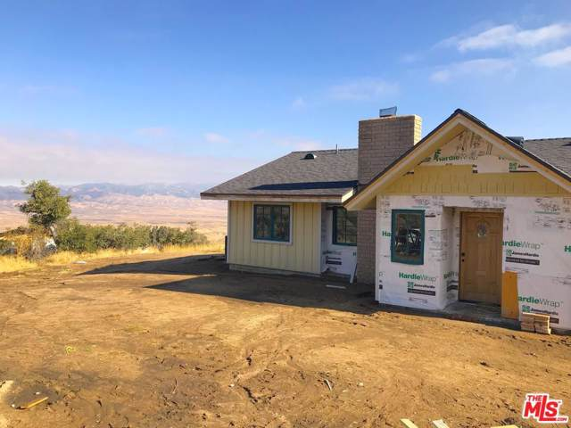 47383 Ridge Route Road, Lake Hughes, CA 93532 (#19533090) :: Lydia Gable Realty Group