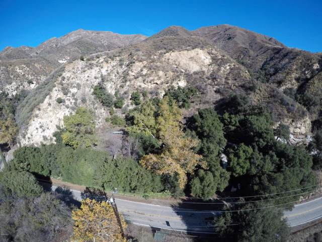 18452 Little Tujunga Canyon Road, Canyon Country, CA 91387 (#219014557) :: SG Associates